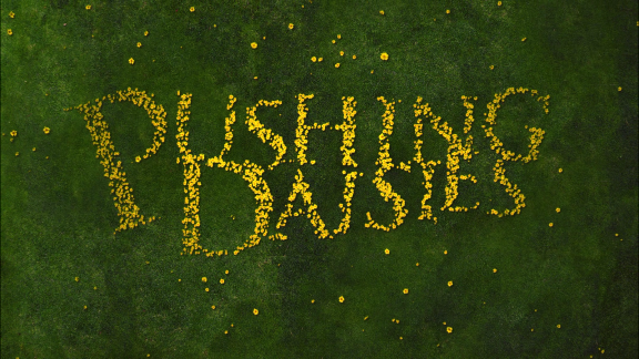 pushing_daisies_the_complete_second_season_1