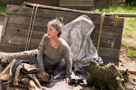 carol-the-walking-dead-well